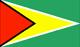 flag Guyana